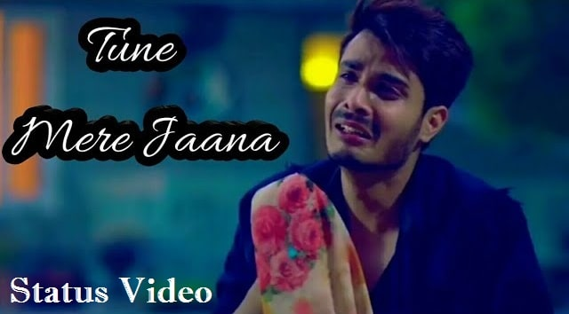Tune Mere Jana Kabhi Nahi Jana Status Video Download
