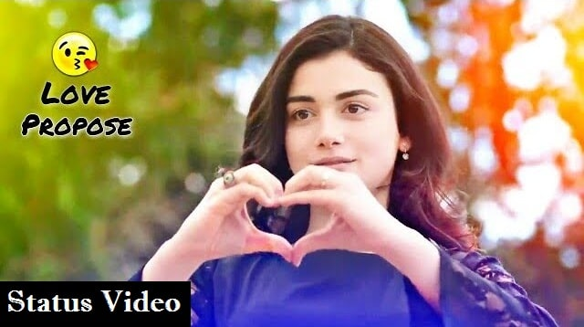 Love Propose Whatsapp Status Video Download 2020