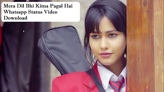 Mera Dil Bhi Kitna Pagal Hai Whatsapp Status Video Download