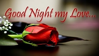 Beautiful Good Night Whatsapp Status Video Download